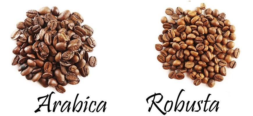 Виды кофейных зерен