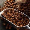 кофе род