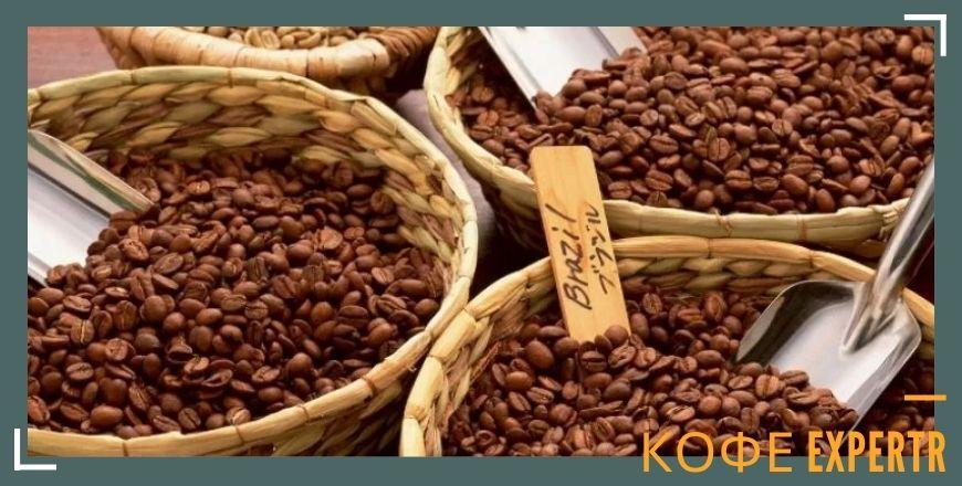 Кофейное дерево арабики зерна