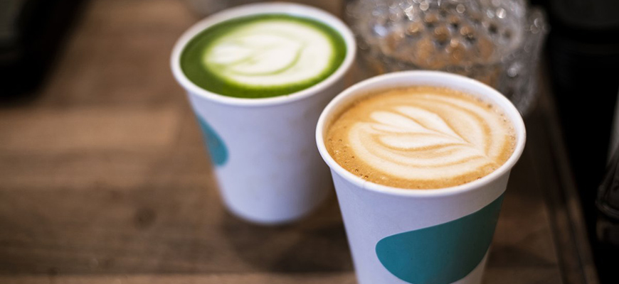 Dolphin Coffee and Matcha